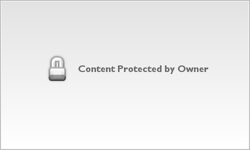 Female Anhinga With Catch, Big Cypress National Preserve, FL