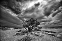 Clouds at Dusk, Panorama Point, Capitol Reef National Park, UT